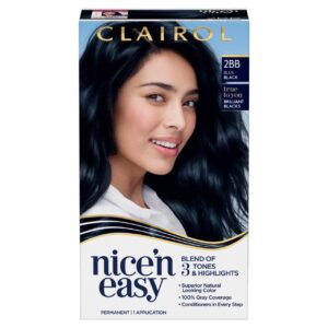 Clairol nice'n'easy 2bb blue black